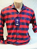 Рубашка мужская байковая в красно-синюю клетку Antoni Rossi (M-44,L-46,XL-48,3XL-52)., фото 1