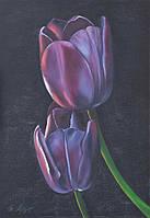 Тюльпаны (Вдвоем) холст 70х50 картина масло