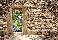 Фотообои 3D Природа 368x254 см Двери через стену (10502CN)