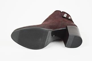 Женские ботинки на каблучке темно-бордовые Gamis 3512, фото 3