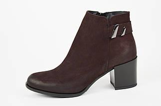Женские ботинки на каблучке темно-бордовые Gamis 3512, фото 2