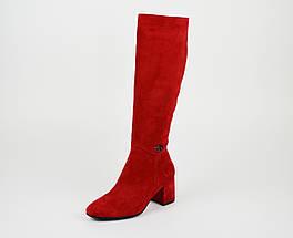 Сапоги замш-велюр красные Nude Lirio 191