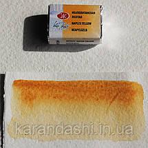 Акварель Белые Ночи Неаполитанская желтая (209) кювета 2,5мл, фото 3