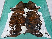 Шкура коровы на пол экзотической бразильской коричнево белой расцветки, фото 1