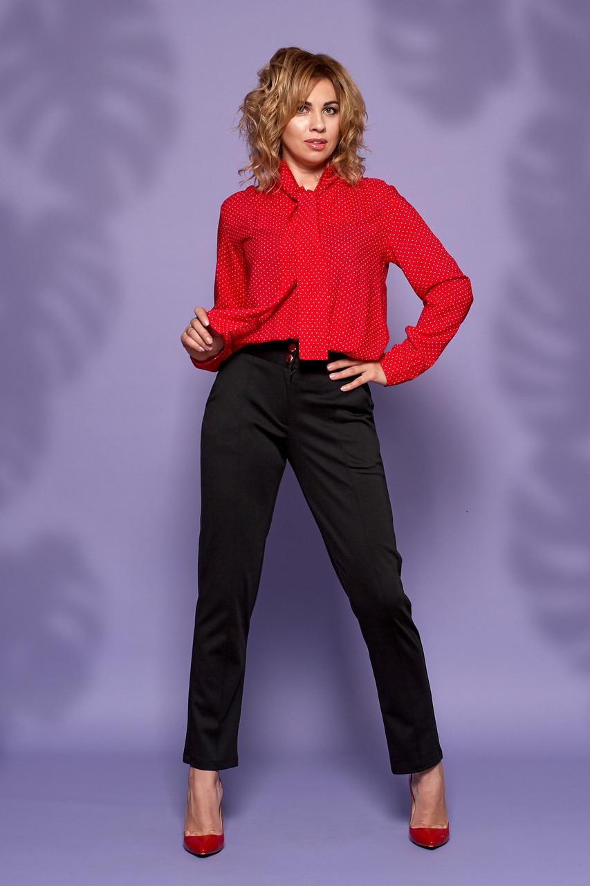 Блуза Евгения 0323_3 красная в горох