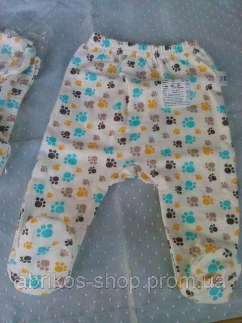 Ползунки  интерлок-- начес  для новорожденного (Украина )