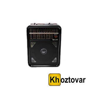 Портативний радіоприймач Golon RX-9100