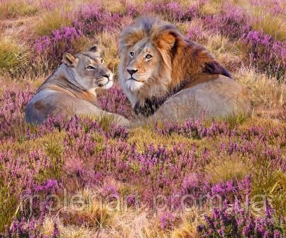 Львы в цветах