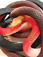 Оригинальный Сувенир Розыгрыш Декоративная Резиновая Змея Прикол для Вечеринки, фото 4