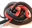 Оригинальный Сувенир Розыгрыш Декоративная Резиновая Змея Прикол для Вечеринки, фото 6