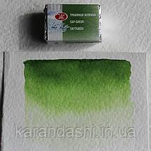 Акварель Белые Ночи Травяная зеленая (716) кювета 2,5мл, фото 3