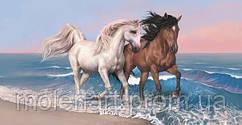 Кони на берегу