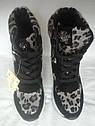 Модные женские сникерсы с леопардовым принтом Размеры 35 36, фото 5