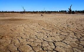 Синоптики прогнозирует засушливое и жаркое лето!!!