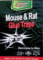 Клеевая ловушка от грызунов, Catch Expert, Суперклейкая, 17*26 см. Усиленная приманка