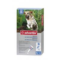 Адвантикс (Advantix) капли на холку от блох и клещей для собак 25-40 кг, 1пип.*4 мл, Bayer (Байер)