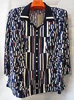 Блуза з квадратиками жіноча батальна (L-I-D-A)