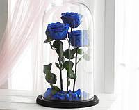 Три розы в стеклянной колбе Синий сапфир.