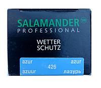 """Крем Лазурь """"Wetter-Schutz"""" PROFESSIONAL для гладкой кожи с губкой Саламандра 75мл, фото 1"""