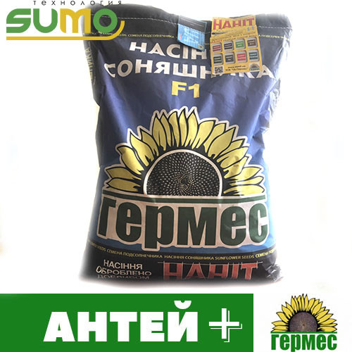 Семена подсолнечника гибрид Антей + (под гранстар)