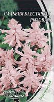 Сальвия блестящая розовая