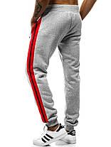 Мужские спортивные штаны J. Style с лампасами серые, фото 3