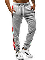 Мужские спортивные штаны J. Style с лампасами серые, фото 2