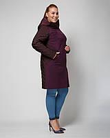 Женское пальто больших размеров с капюшоном рр 48-60