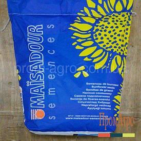 Семена подсолнечника, Maisadour, MAS 93 SR, под евролайтинг