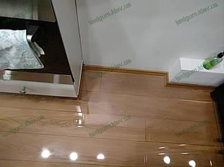 защитный прозрачный ковер при входе в помещение