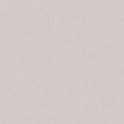 Светло-серый (Серый дымчатый) U708