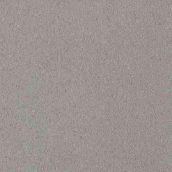Алюминий матированный Титан F501