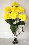Хризантема 7 голов, фото 2