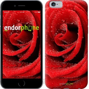 "Чехол на iPhone 6 Красная роза ""529c-45-571"""
