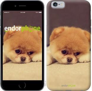 """Чехол на iPhone 6s Boo 2 """"890c-90-571"""""""