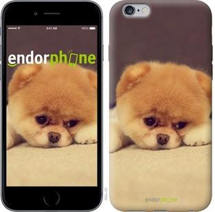 "Чехол на iPhone 6s Plus Boo 2 ""890c-91-571"""