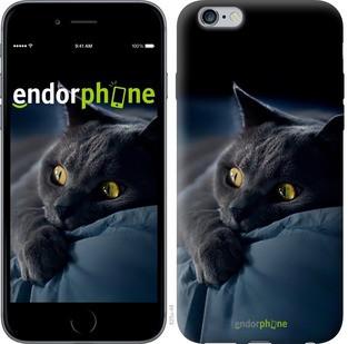"Чехол на iPhone 6 Plus Дымчатый кот ""825c-48-571"""
