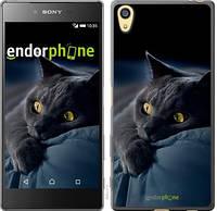 "Чехол на Sony Xperia Z5 Дымчатый кот ""825c-274-571"""