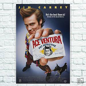 Постер Эйс Вентура / Ace Ventura (1994). Размер 60x40см (A2). Глянцевая бумага
