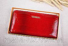 Кошелек на молнии женский кожаный R-14071, темно красный, натуральная кожа, фото 3
