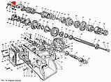 Вал первинний КПП ЮМЗ-6, Д-65 36-1701030-В, фото 5