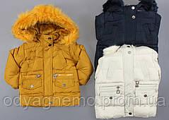 Курточка утеплена для дівчаток Nature оптом ,12/18-30/36 міс.