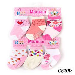 Шкарпетки дитячі оптом з тормозками Малюк CB2017