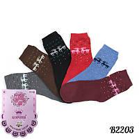 Носки женские махровые с бамбуковым волокном Корона B2203 | 12 шт.