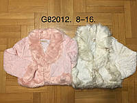 Шубка для девочек оптом, Grace, 8-16 лет,  № G82012, фото 1