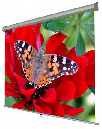 Экран для проектора Walfix SNM-5 300 х 225 см, фото 2