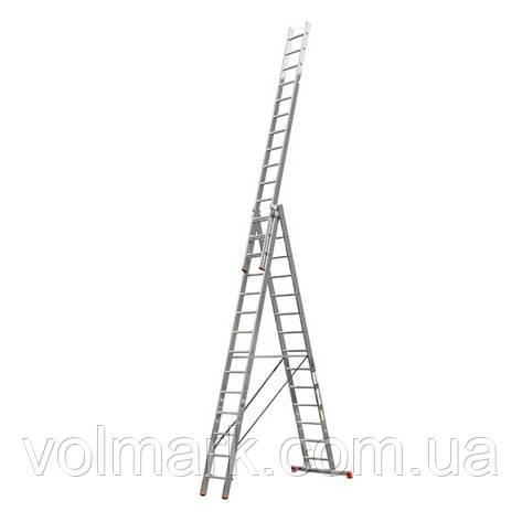 Свитязь 01310 Лестница универсальная 3х10, фото 2