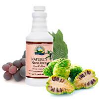 Нэйчез Сок Нони из плодов моринды Nature's Noni Juice NSP
