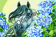 """Схема для частичной вышивки бисером """"Красивая лошадка"""""""
