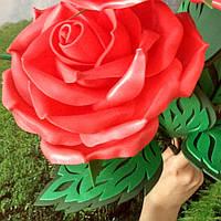 Роза красная-2. Ростовые цветы из изолона.